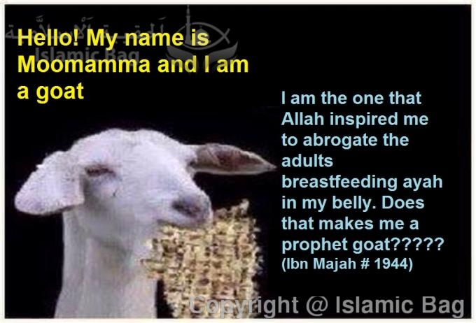 Absurd cases of Abrogation, the ayah that was abrogated inside a goat's belly